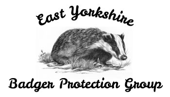 East Yorkshire Badger Protection Group